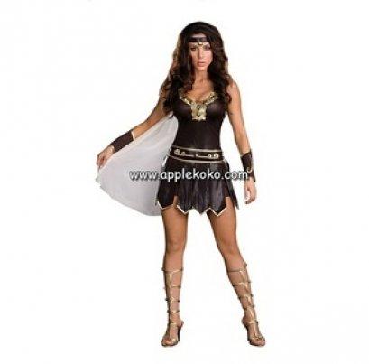 [[สินค้าหมด]] ชุดแฟนซี cosplay ชุดคอสเพลย์ ชุดนักรบหญิง