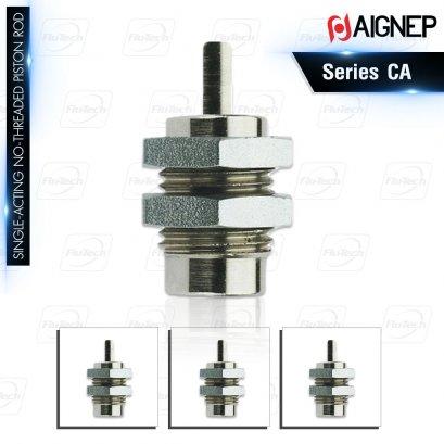 AIGNEP Series CA