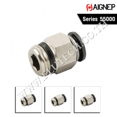 AIGNEP Series 55000