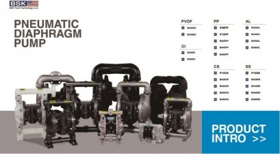 BSK Pneumatic Diaphragm Pump