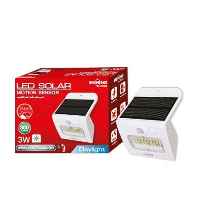 LED Solar Motion Sensor 3W