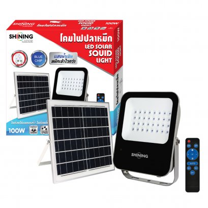 LED Solar Floodlight Blue Chip