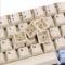 KBDFANS 67 Keys OEM DYE SUB PBT KEYCAPS SET