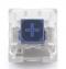 Kailh switch NovelKeys x Kailh Box Thick Clicks [NAVY/JADE] สวิตซ์แบบ clicky หนักแน่น x 1 ตัว