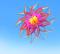 ว่าวดอกไม้