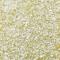 Jewel Dust : PASTEL YELLOW 4g