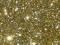 Disco Glitter : GOLD 5g