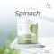Spinach (ผักโขมผง)