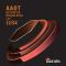 AAOT Phosphor Bronze Acoustic Strings 1254