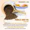 Panja Oil ปัญจะออยล์ น้ำมันสกัดเย็น 5 ชนิด 3 แถม 1