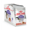 Royal Canin Gravy Sterilised Pouch 85 g. x 12