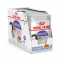 Royal Canin Jelly Sterilised Pouch 85 g. x 12