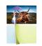 3d lenticular sticker 3d sticker printing custom 3d stickers