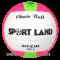 แชร์บอล ลูกแชร์บอลหนัง Chairball PVC SPL