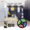 Smart LED Strips SMD5050 12w/m IP65 RGBW with adapter WiFi  EV02
