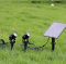 LED Solar Cell SGSL-02 4x1W