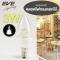 LED Flower Candle E14 หลอดแอลอีดี รุ่น Flower ทรงเปลวเทียน ขนาด 3 วัตต์ แสงขาวเดย์ไลท์ และแสงเหลืองวอร์มไวท์ ขั้ว E14
