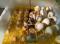 ตู้ฟักไข่ไก่ทอง 48 ฟอง เเบบมีสายต่อเเบตเตอรี่