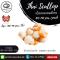 เนื้อหอยเชลล์ไทย (Scallop with Roe) (60/80 PCS/IB,(NET WEIGHT 80%)