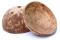 Coconut dried กะลามะพร้าวขัดเงา