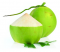 Young coconut มะพร้าวอ่อน