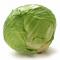 Cabbage กะหล่ำปลี