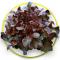 Red oak lettuce เรดโอ๊ค