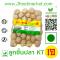 Vegan Fish Balls KT(kuangti)