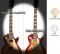 Jazz Bass Block (WP) Inlay Sticker for 5-String Bass