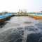 Chemical  for waste water treatment