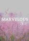 Marvelous 8