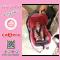 คาร์ซีทแบบกระเช้า ZAC 342 Camera Baby Carseat