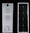 Street Light Solar 60W 2module